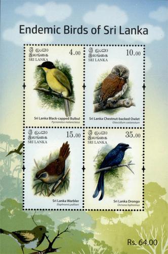 Endemic Birds of Sri lanka(ss) - 2017