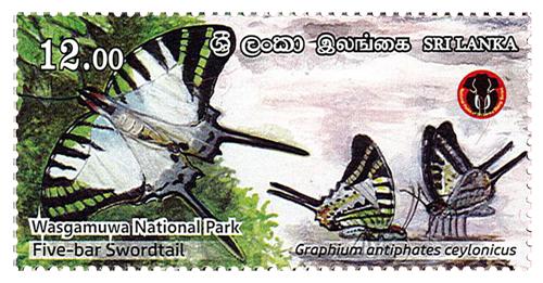 National Parks of Sri Lanka - Wasgamuwa National Park(2/6) - 2019(Five - bar Swordtail)