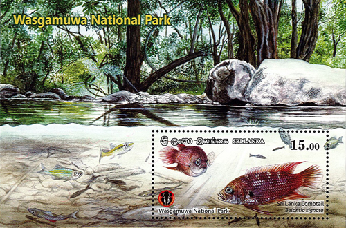 National Parks of Sri Lanka(ss) - Wasgamuwa National Park(3/6) - 2019(Sri lanka Combtail)
