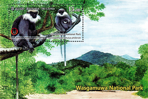 National Parks of Sri Lanka(ss) - Wasgamuwa National Park(4/6) - 2019(Sri Lanka Purple - Faced Langur)