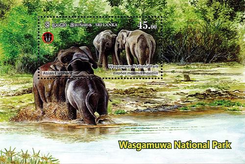 National Parks of Sri Lanka(ss) - Wasgamuwa National Park(5/6) - 2019(Asian Elephant)