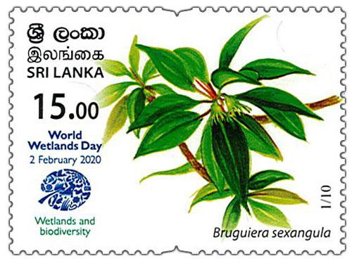World Wetlands Day - 2020 - 01/10 (Bruguiera sexangula)