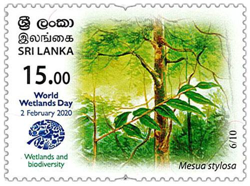 World Wetlands Day - 2020 - 06/10 (Mesua stylosa)