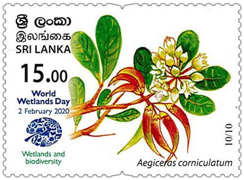 World Wetlands Day - 2020 - 10/10 (Aegiceras corniculatum)