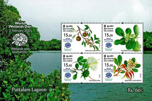 World Wetlands Day(ss) Puttalam Lagoon - 2020 (3/3)