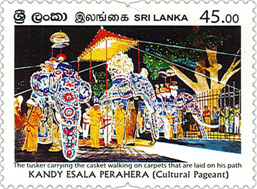 Kandy Esala Perahera - 2020 (The tusker carrying the casket walking on carpet that are laid on his path)